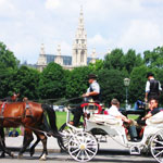 Fiaker: Getting around in Vienna