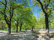 Strolling through Vienna's 'Prater' - vast recreation area