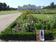 Belvedere gardens & palace - a jewel of Baroque architecture